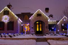 2012-photo-warm-white-icicles