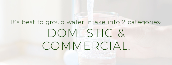 It's best to group water intake into 2 categories: Domestic & Commercial.