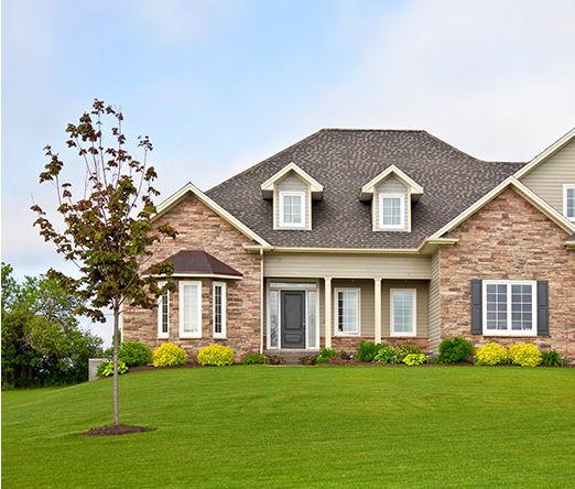 house-green-grass