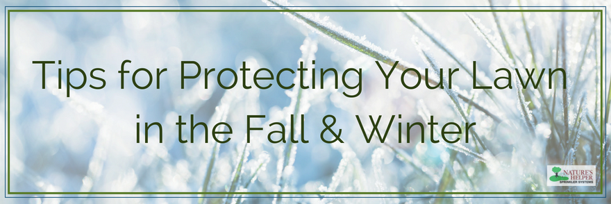 Tips for Protecting Your Lawn in the Fall & Winter